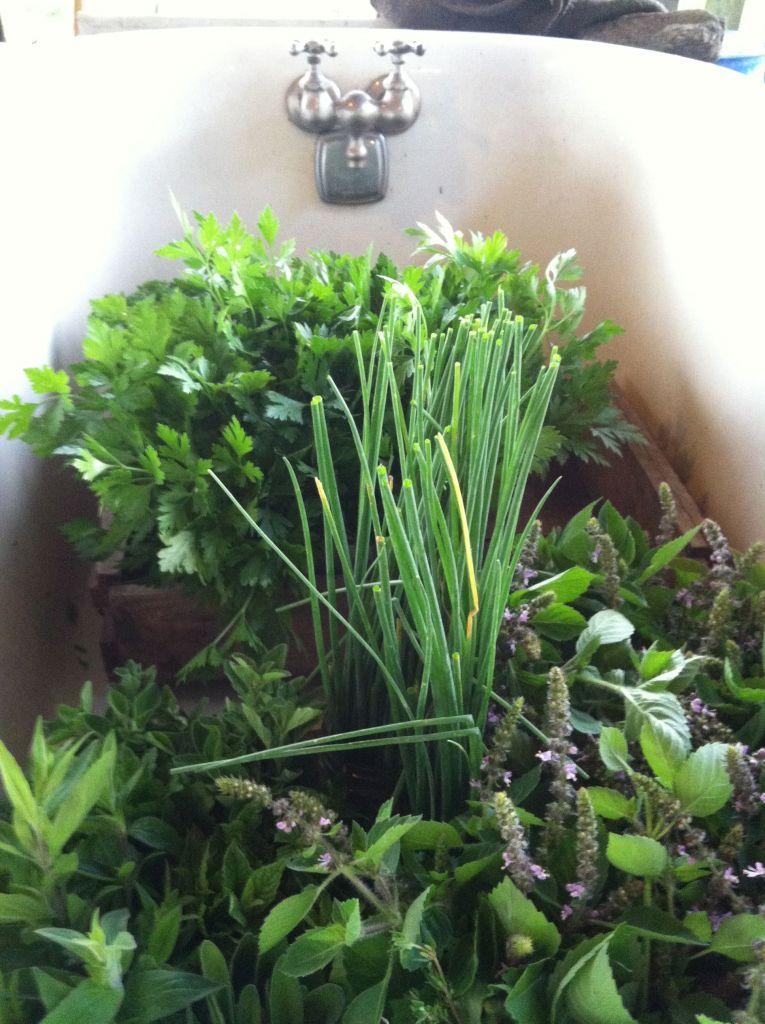 herbsbathtub